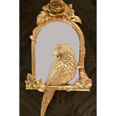 spiegel papegaai