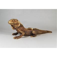 deco iguana