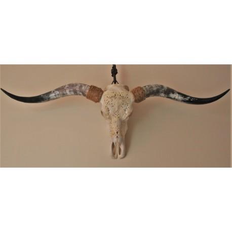 Longhorn schedel met carving