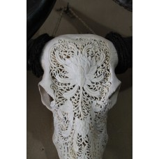 Buffalo skull full carving Lotus