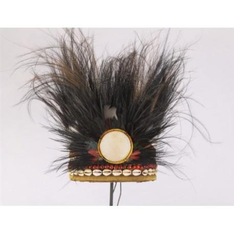 Decoratieve inheemse tooi