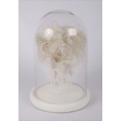 Glass dome with feathers