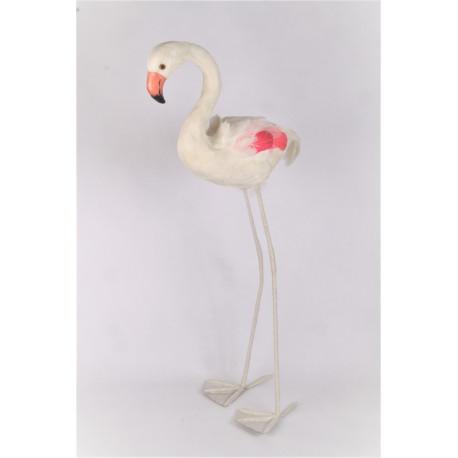 Flamingo veren wit